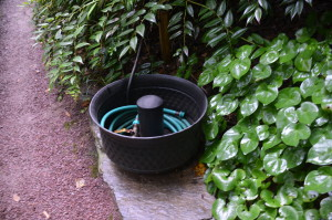 Backup Watering System