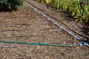 Types irrigation systems of pdf