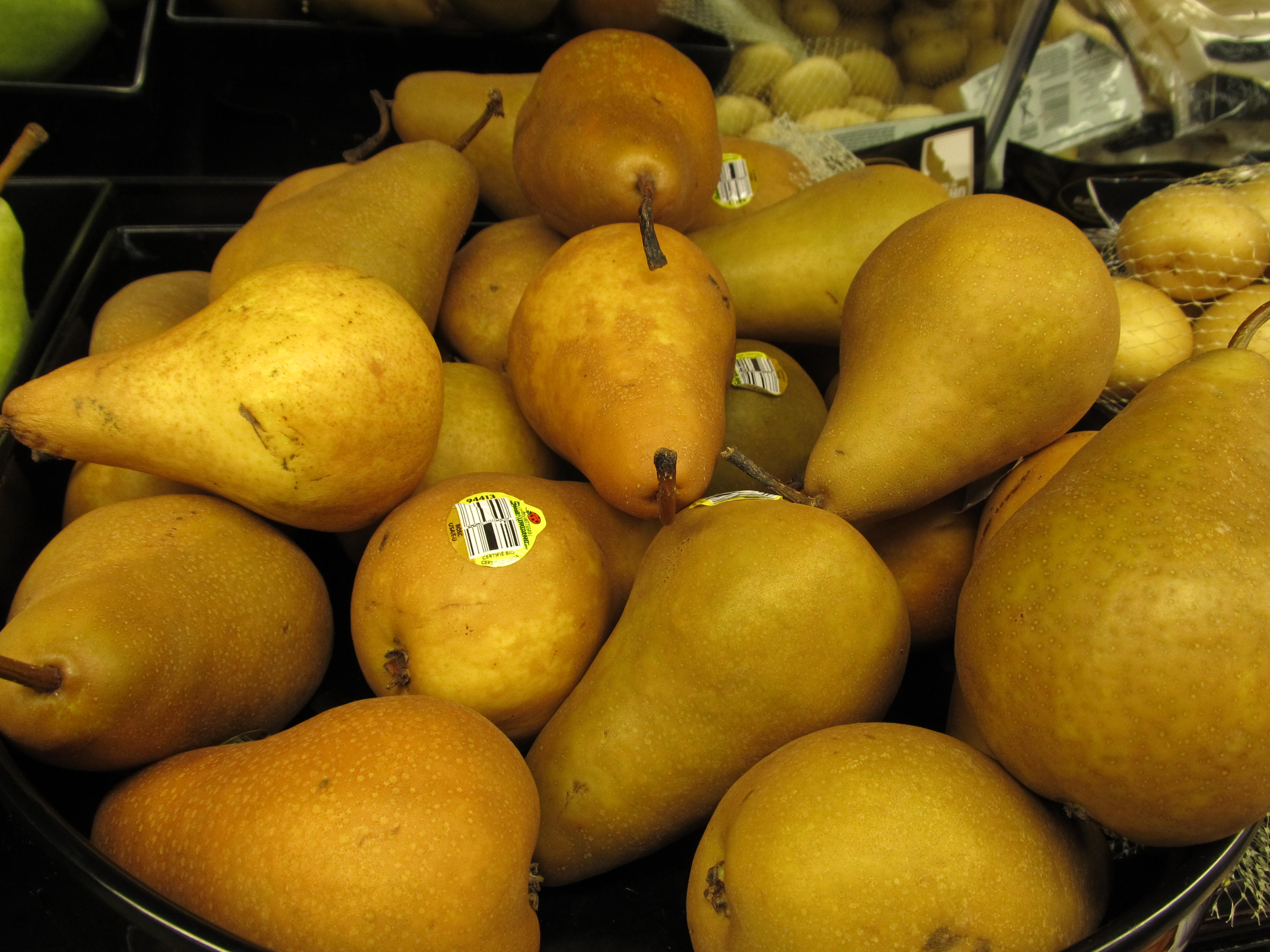 Asian Pear Varieties Pictures